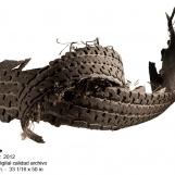 aa-2012-rodadora-2-7696
