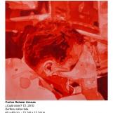 csa-2010-cual-crisis-72-6392
