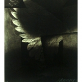 dm-1988-arquitectura-de-la-flecha-de-oro-y-de-fuego-1494