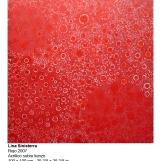 ls-2007-rojo-4839-marq
