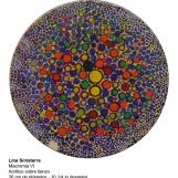 ls-2009-macromia-vi-5582