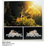 aa-2007-stillife-with-forest-5705-marq
