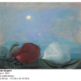 fs-2011-luna-4-6658