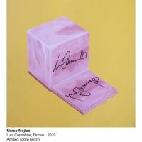 MM-2019-Luis-Camnitzer-firmas-MOMA246