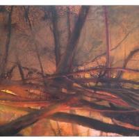 MCC-2015 Brasas - De la serie incendios 10688