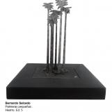 bs-palmeras-pequenas-7890