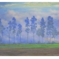 Gonzálo Ariza - Eucaliptos en la niebla.