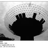 pm-1980-hombre-arana-6887